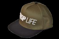 CSRP LIFE